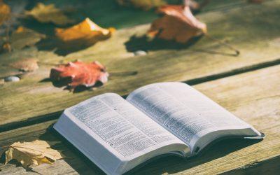 Sunday Bible Class – 9/29/2019