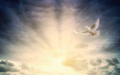 The Holy Spirit II